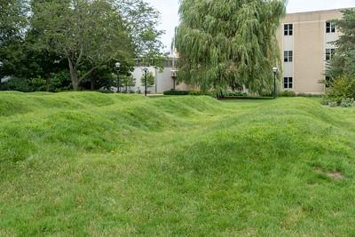 Wave Field at University of Michigan
