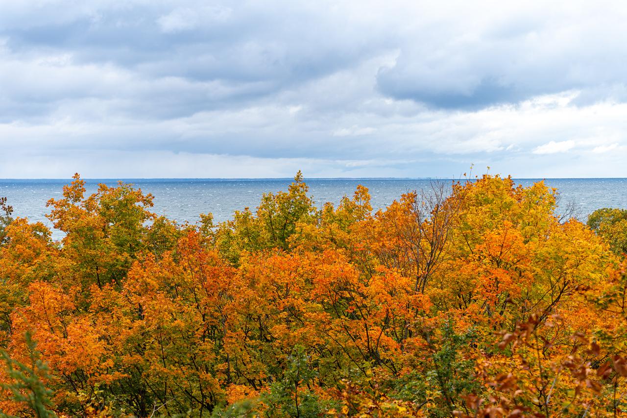 Fall colors along Lake Michigan