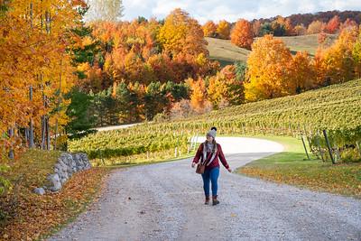 Bluestone Vineyards in Michigan
