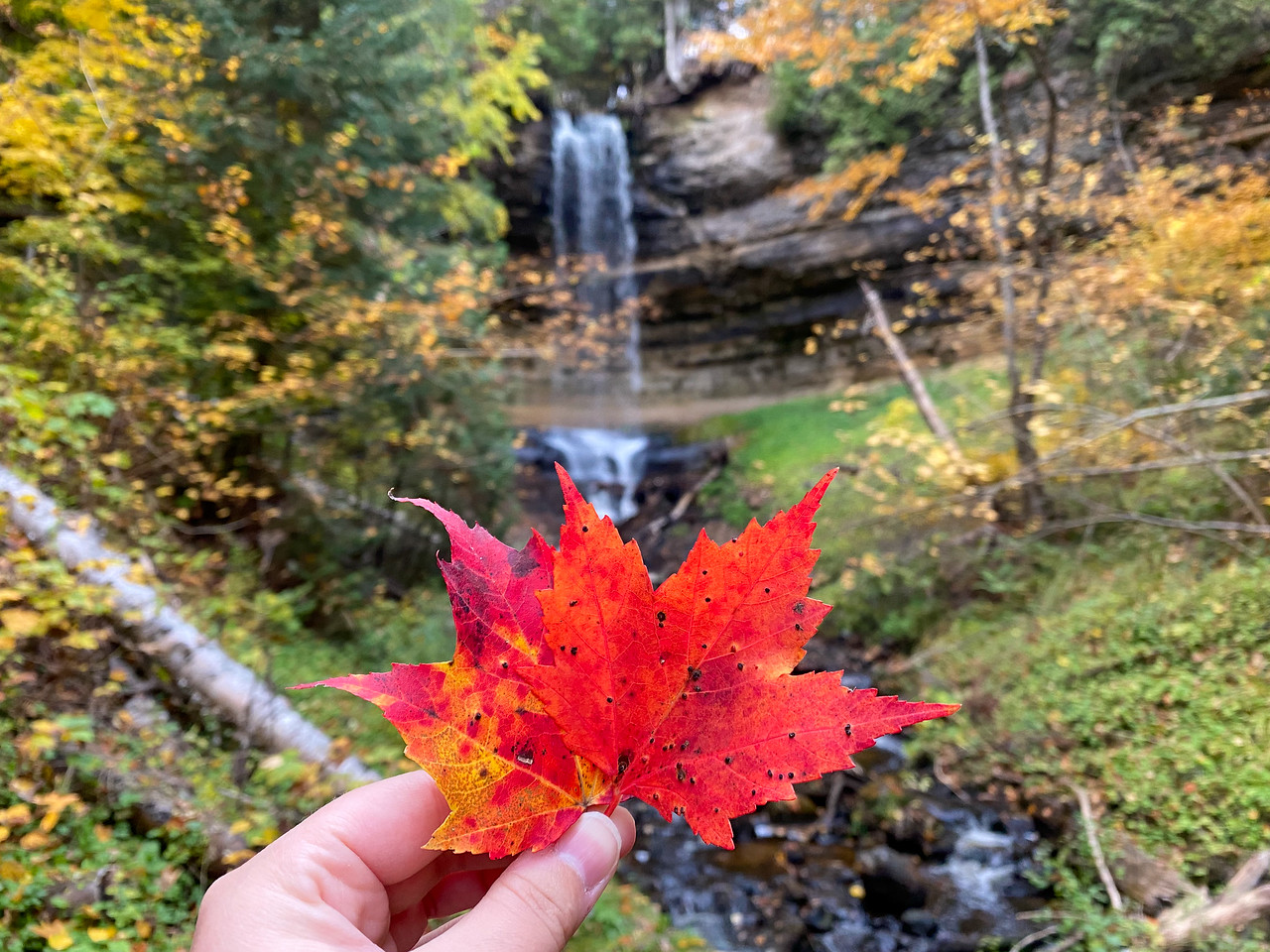 Fall colors at Munising Falls