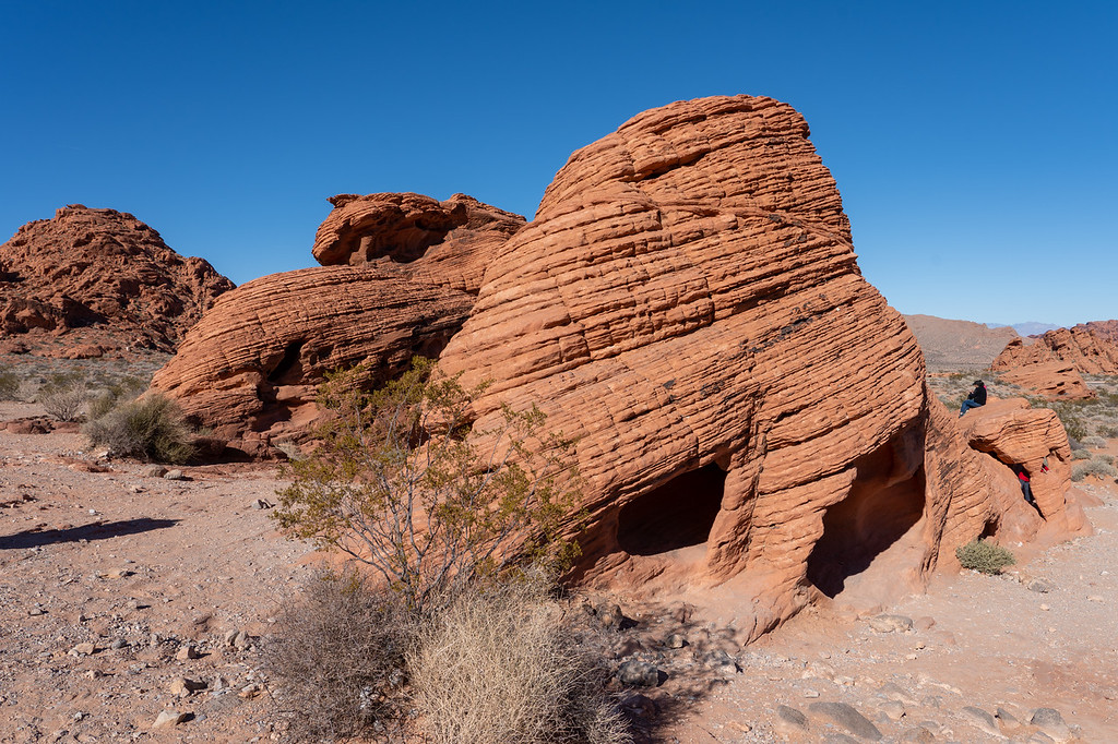 Beehives at Valley of Fire State Park