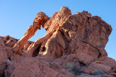 Elephant Rock at Valley of Fire State Park
