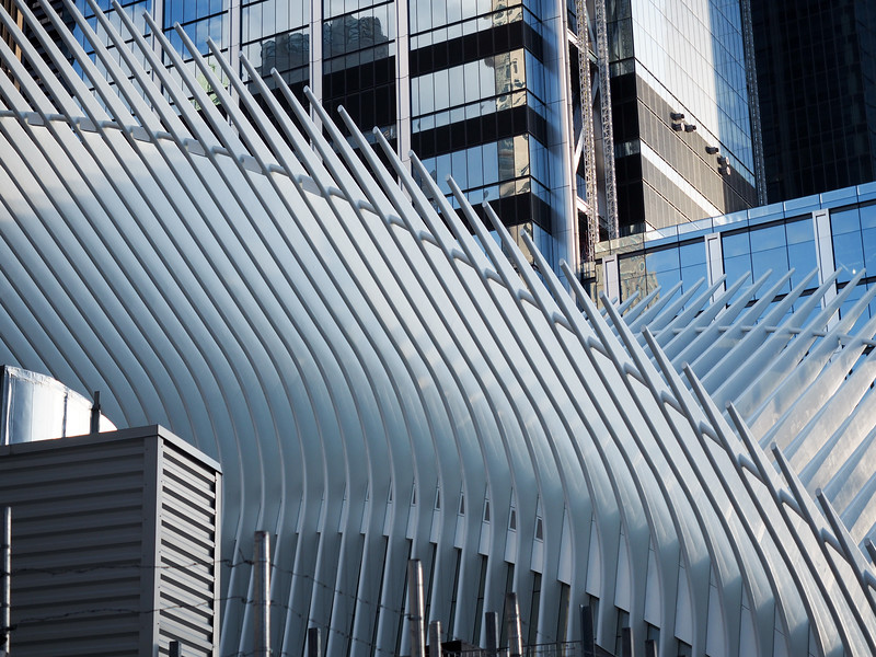 Oculus architecture in New York City