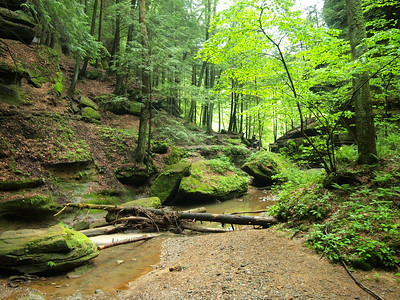 Upper Gorge at Hocking Hills State Park