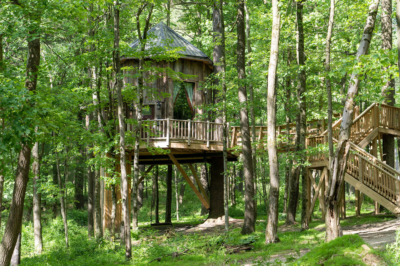 Tree house El Castillo
