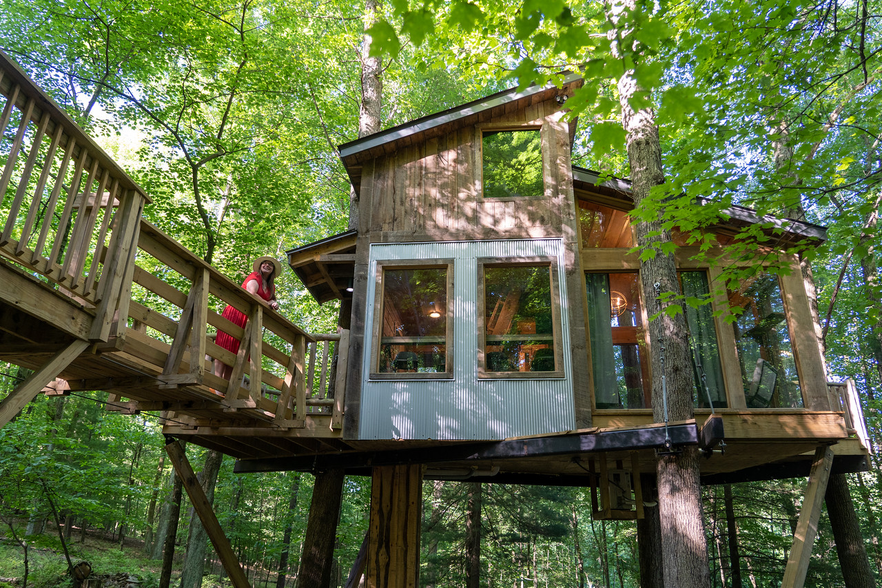 The View treehouse