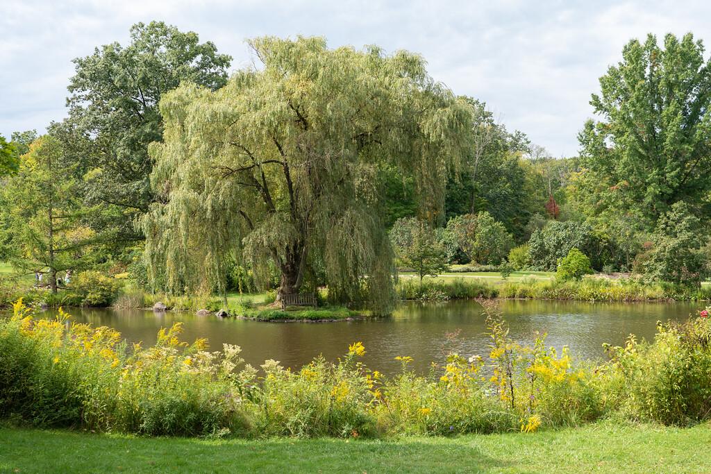 Holden Arboretum in Ohio