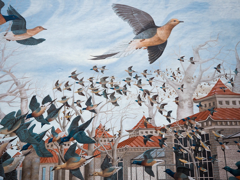 Martha, the Last Passenger Pigeon mural in Cincinnati