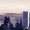 The famous & marvelous view from the Japanese Garden where the Mount Hood was clearly visible on that day !!