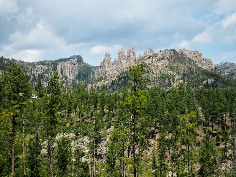 Custer State Park, South Dakota