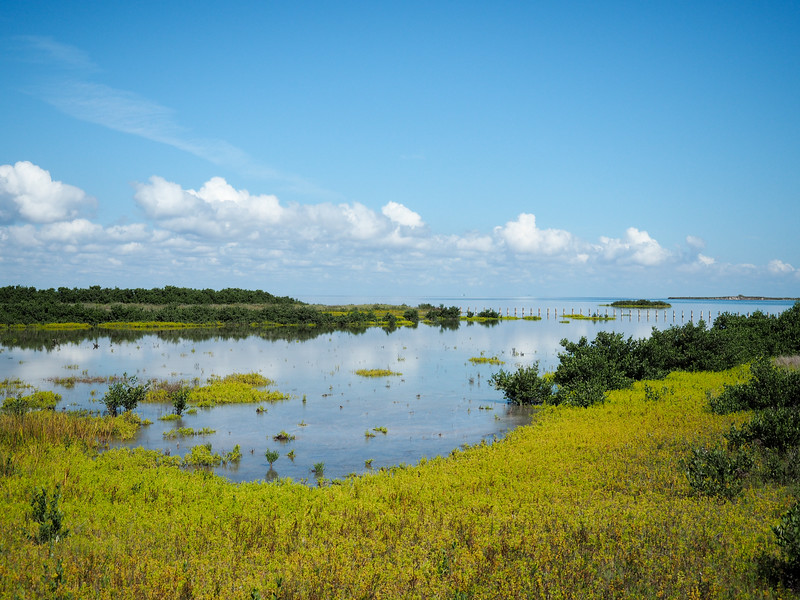 The Laguna Madre on South Padre Island