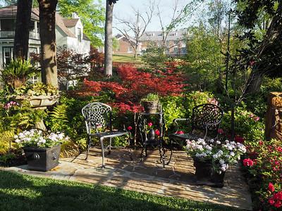 Garden in Tyler, Texas