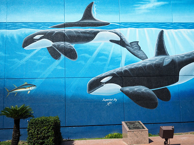 Whaling Wall on South Padre Island