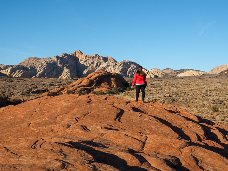 Petrified Dunes at Snow Canyon State Park