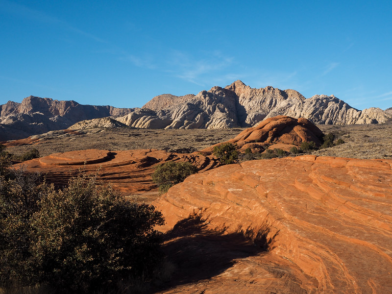Petrified Dunes in Snow Canyon State Park