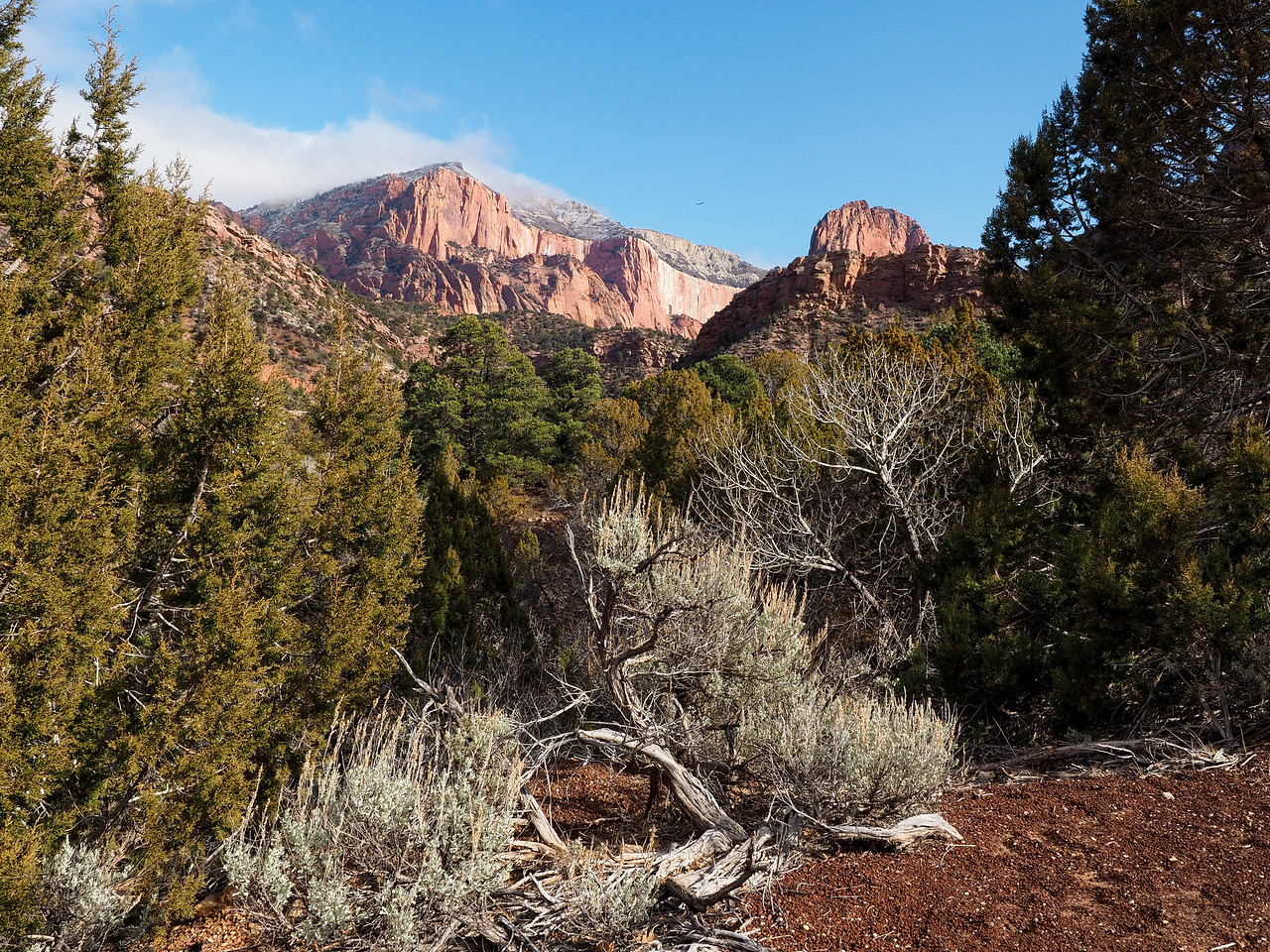 Kolob Canyons section of Zion National Park