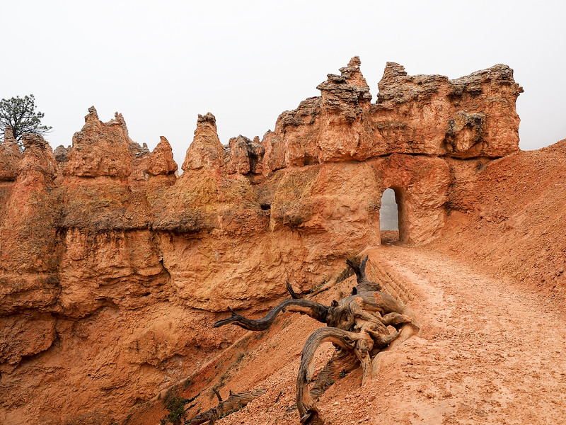 Queens' Garden trail in Bryce Canyon National Park