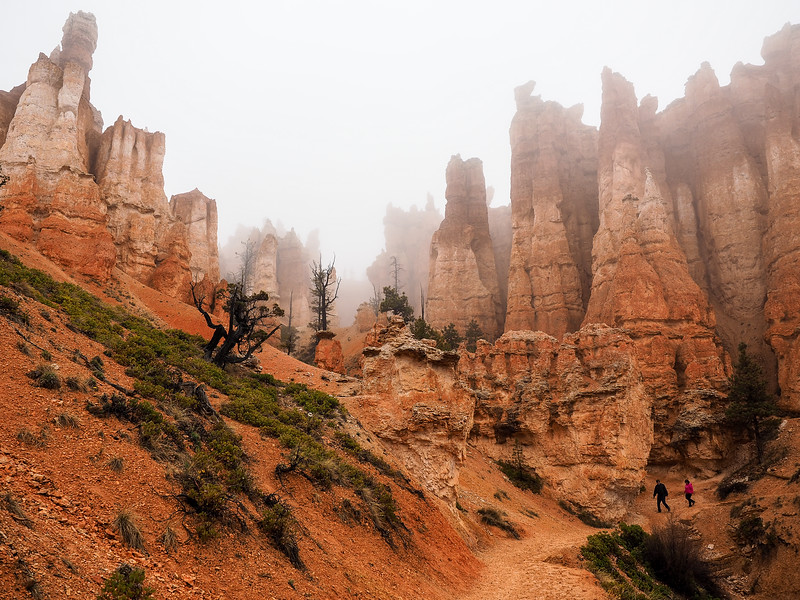 Hiking in Bryce Canyon National Park in the fog