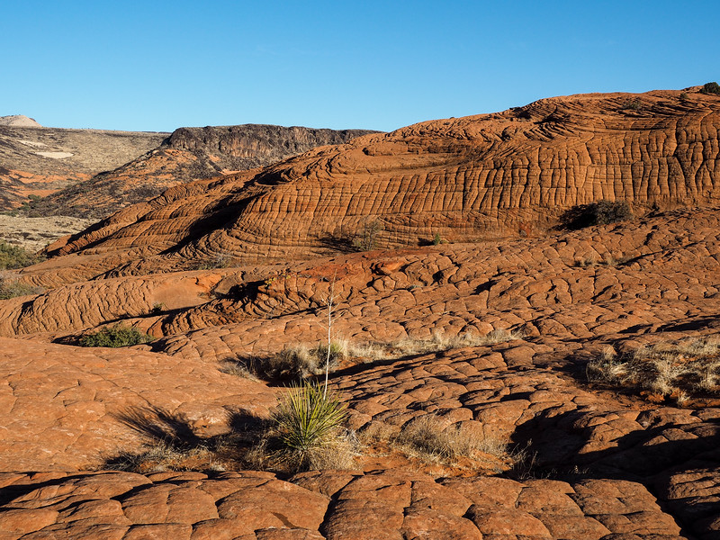 Petrified Dunes at Snow Canyon State Park