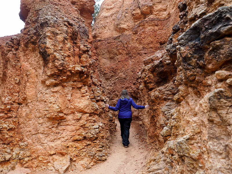 Hiking the Navajo Loop in Bryce Canyon National Park