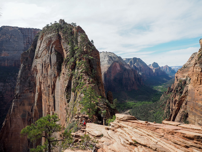 "View of ""The Spine"" of Angel's Landing in Zion National Park"