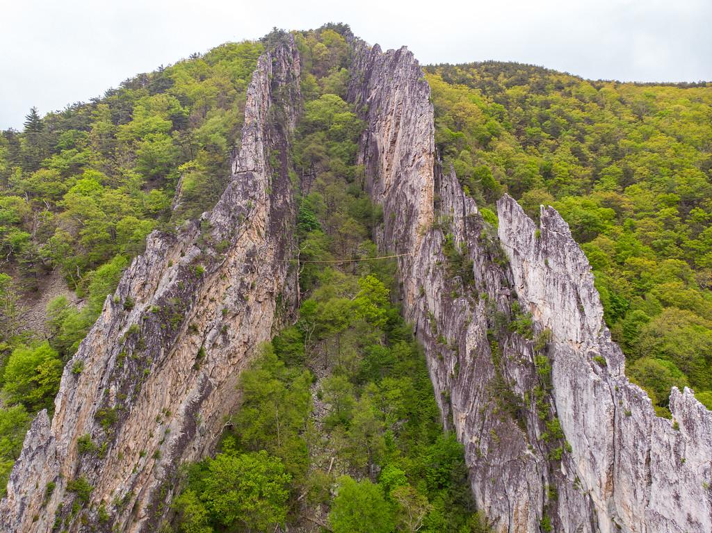 Rock fins at Nelson Rocks