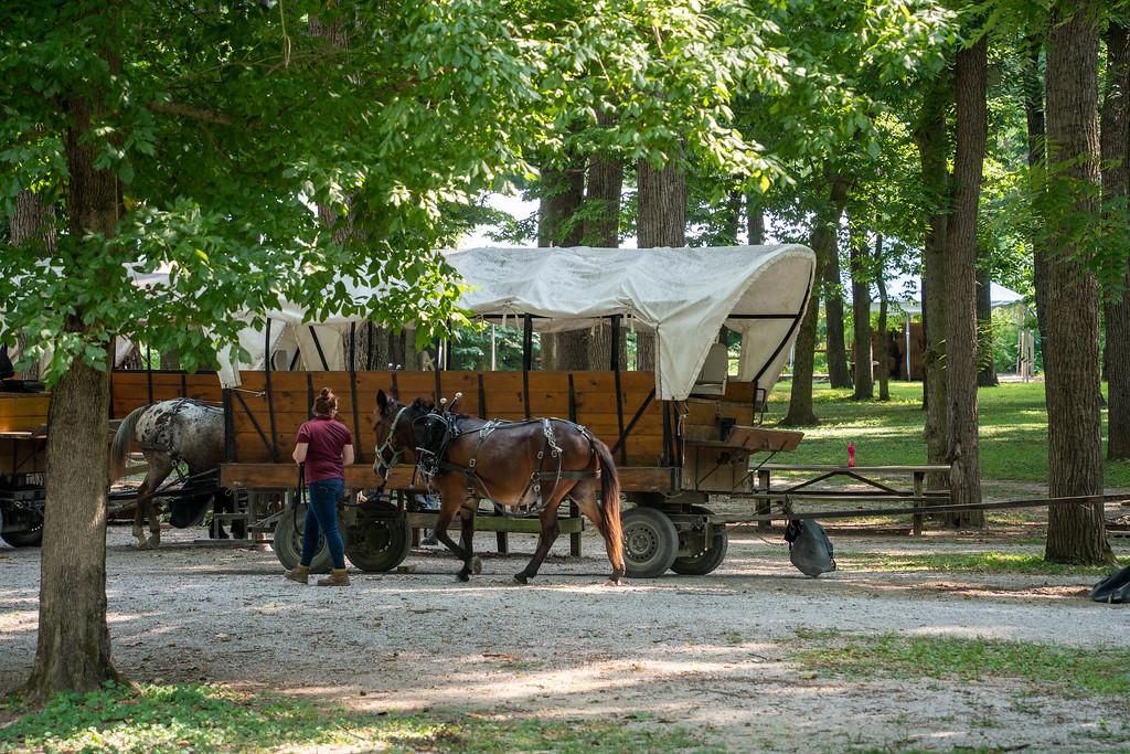 Blennerhassett Island wagons