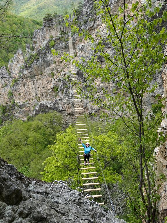 Amanda on a suspension bridge