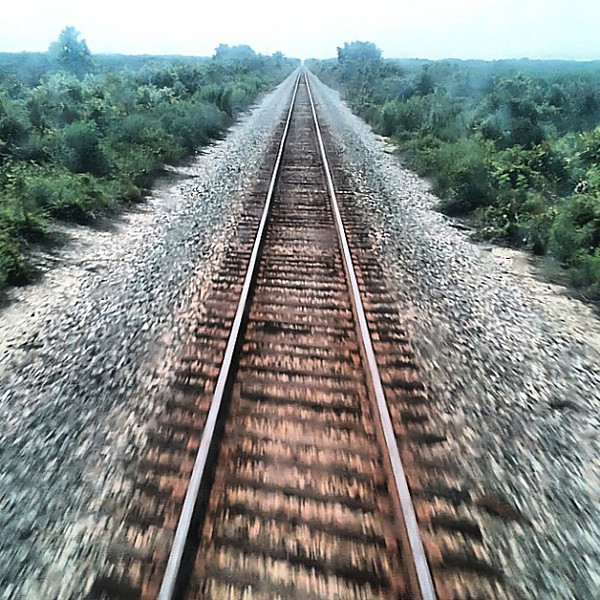 Travel dreaming out the back window - Amtrak crosses Central Florida #train