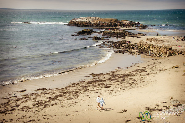 Walking the Beach, Route 1 Between San Francisco and Monterey in California