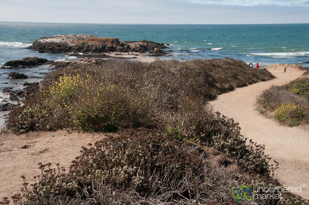 Coastline Between San Francisco and Monterey, California
