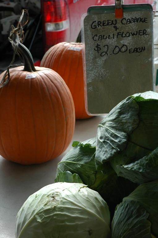 Cabbage and Squash - Ann Arbor, Michigan