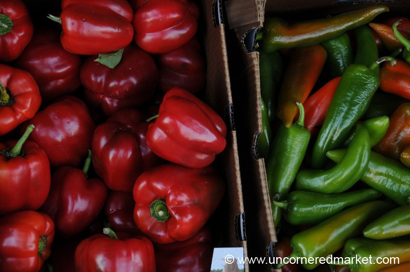 Sweet and Spicy Peppers - Jacksonville, Florida