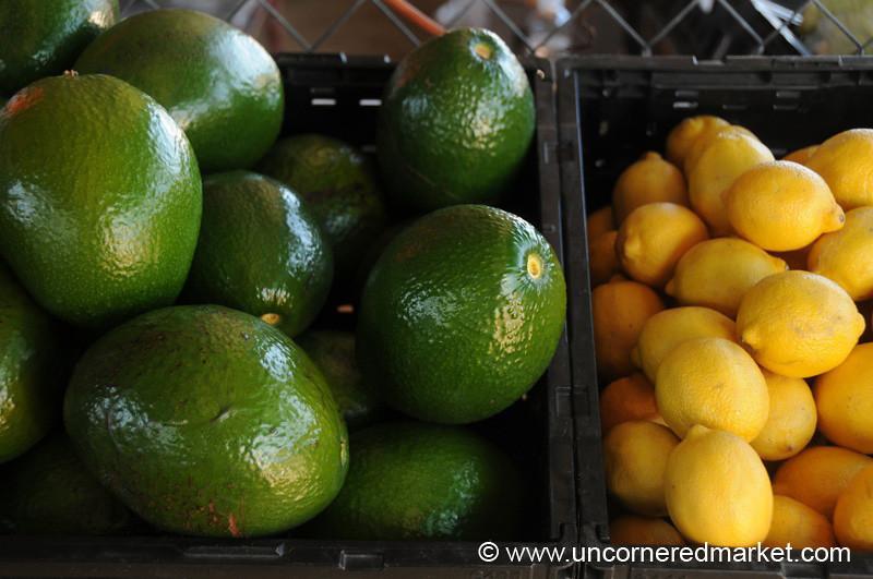 Big Avocados at Jacksonville Market, Florida