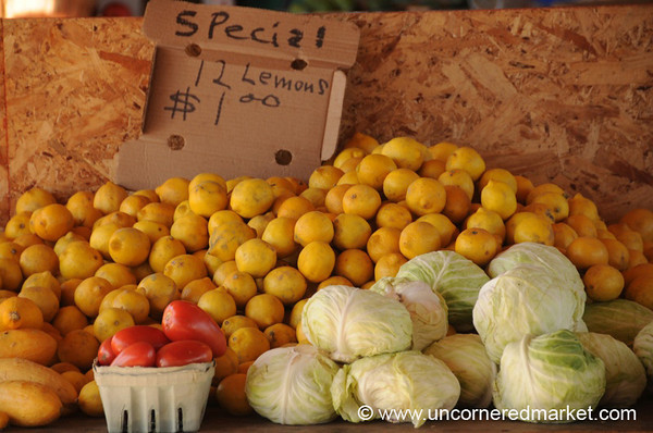 Lemons and Cabbages at Jacksonville Market, Florida