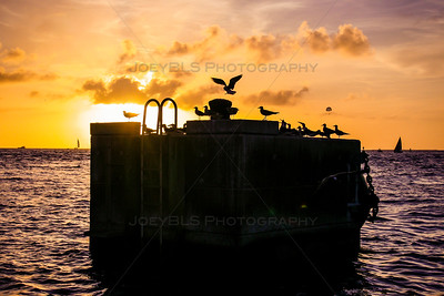 The sunset at Mallory Square in Key West, Florida. This is a popular tourist destination and is noted for it's beautiful sunsets.