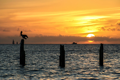 Sunset at Mallorey Square in Key West, Florida