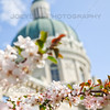 Spring at the Indiana State House in Indianapolis