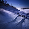 Indiana Dunes Driftwood and Snowy Landscape - Vertical