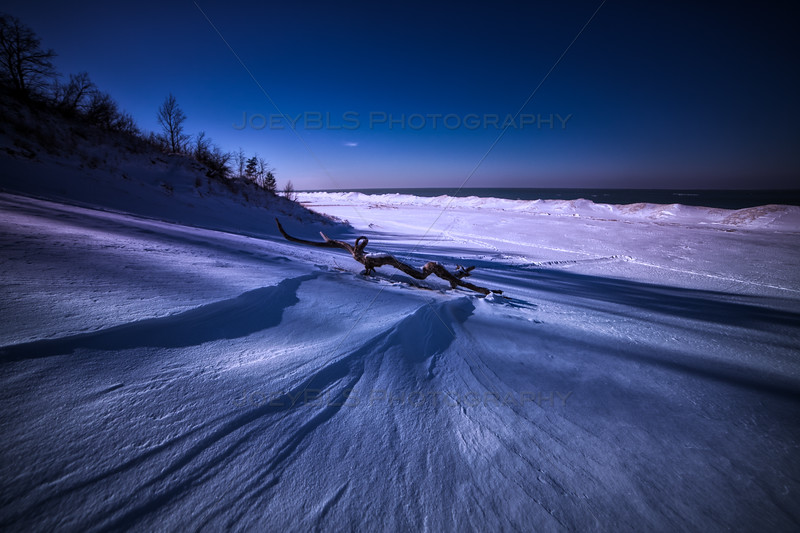 Indiana Dunes Driftwood and Snowy Landscape