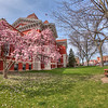Downtown Crown Point, Indiana in Spring