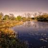 The Lagoun at Marquette Park - Gary, Indiana