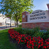 Welcome to Downtown Hammond, Indiana Sign