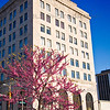 Spring in Downtown Hammond, Indiana