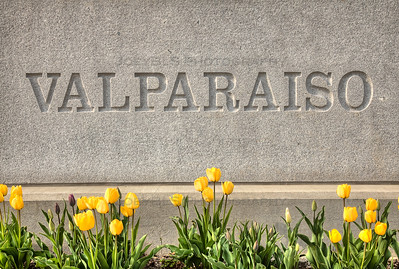 Valparaiso Sign with Tulips