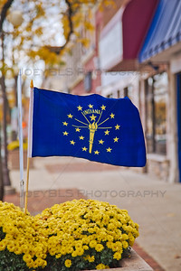 Indiana State Flag in Downtown Plymouth, Indiana