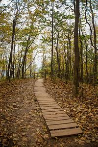Empire Bluffs Trail near Empire, Michigan