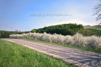 Spring Roads in Leelanau County, Michigan