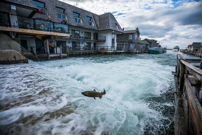 The damn at Fishtown - Leland, Michigan