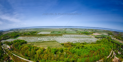Aerial Panoramic of Cherry Orchards on Old Mission Peninsula
